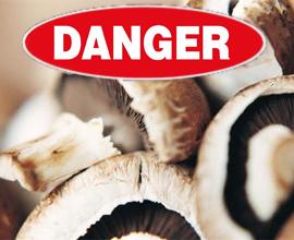 Если вы отравились грибами