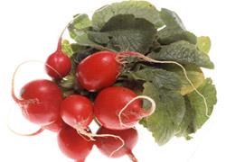 Салат из редиса с яблоками и маринованными огурцами